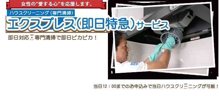 エクスプレスサービス(即日特急)