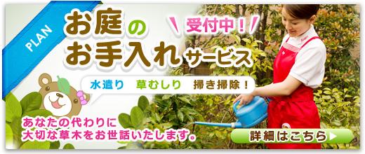 【季節のオススメ】お庭のお手入れサービス